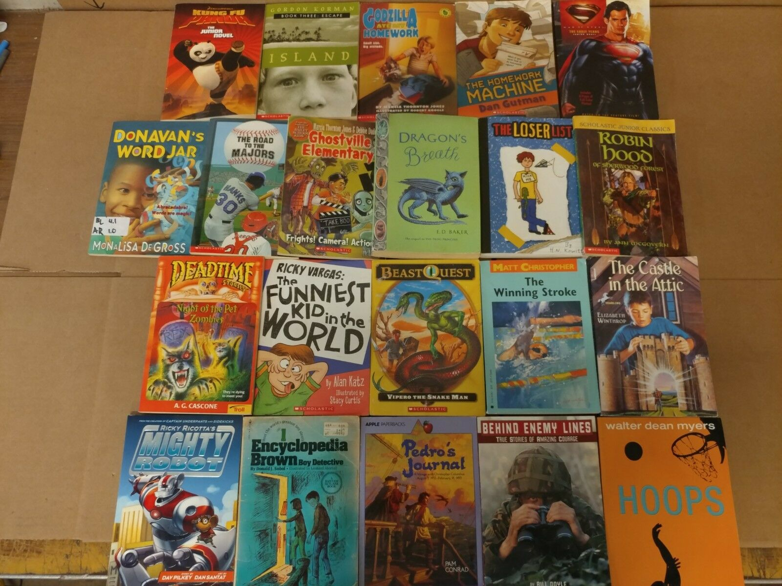 Lot of 20 Chapter Books for BOYS Youth Early Reader Young Adults Children RANDOM