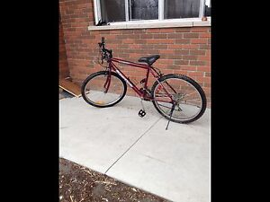 Supercycle mountain bike 4 sale