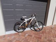 Downhill 26-inch Mountain bike 2010 Felt Redemption 1 South Bowenfels Lithgow Area Preview