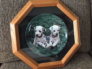Dalmation collector plate and frame