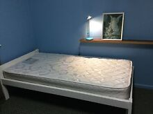 Pine wooden Single bed in white Macquarie Fields Campbelltown Area Preview