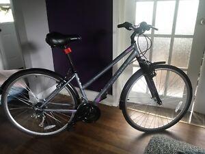 """Super cycle adult bike 5""""5 - 5""""11    16"""" frame"""