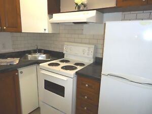1 1/2, 1 MONTH FREE, JULY,downtown,FURNISHED APARTMENT, McGill