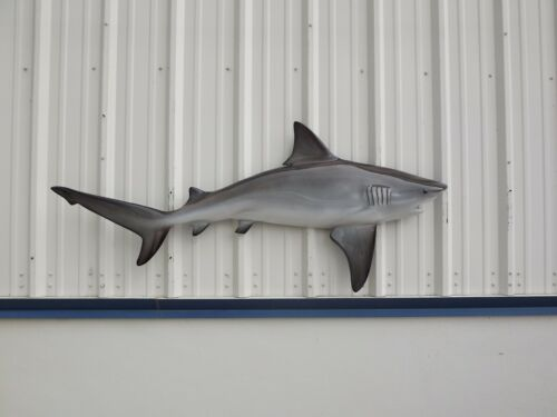 """67"""" Bull Shark Half Mount Replica - 20 Business Day Production Time"""