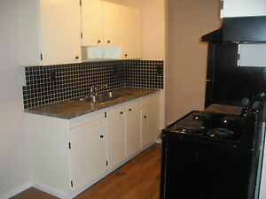 2 Bedroom condo for rent May 1