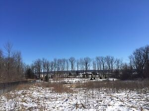2 Acres Vacant Land