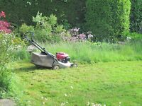 Tall grass cutting services in brampton and Missuga