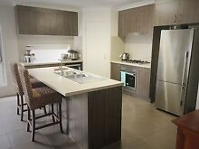 Room with private bathroom and toilet for rent $200pw Caloundra West Caloundra Area Preview