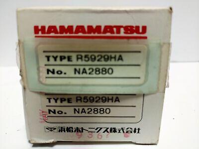 Hamamatsu R5929ha Photomultiplier Tube