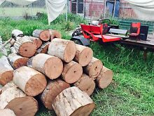 Ironbark firewood split and delivered Greenbank Logan Area Preview