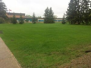 Lots for sale beside the schools in Thorsby