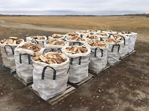 Totes of Birch Firewood