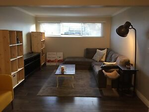 2 bedroom unit newly renovated with tv and internet included