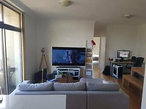 Wentworth Street, Manly, Sydney - flatshare Manly Manly Area Preview