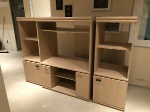 Entertainment Unit with book shelves