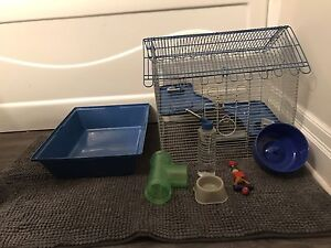 Moving need to find hamster a good home