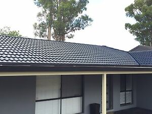 Roof painting and cleaning ( free quote , good price ) Hornsby Hornsby Area Preview