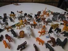 Assorted Wild Animals Kardinya Melville Area Preview