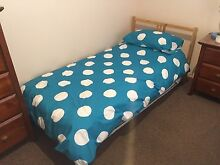 Single Bed Frame Mattress Sheets Pillows + Extra Single Mattress South Bunbury Bunbury Area Preview
