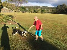 Mobile Personal Trainer $30 per session Ashmore Gold Coast City Preview