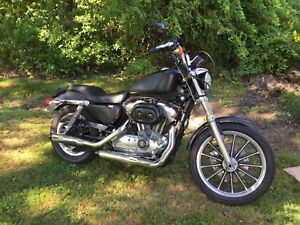 Sportster XL 883 for sale