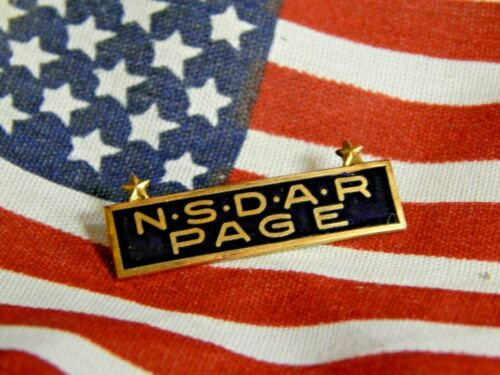 NSDAR PAGE PIN - J E CALDWELL - ONE OF A KIND DESIGN!