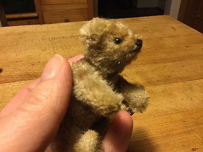 """RARE Antique Early 1900s Steiff Miniature TINY Teddy Mohair STARGAZER Bear 3.5"""""""