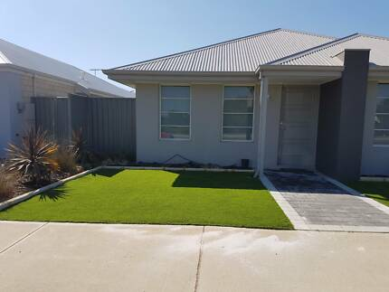 35mm Artificial Lawn Supply & Installed $45.90/sqm