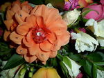 Grace N Favour Floristry