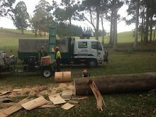 Woodsplitter Hire Devonport Devonport Area Preview
