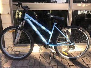 Blue Lady Bike