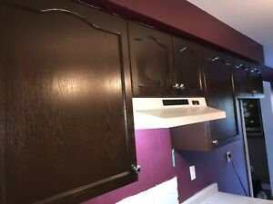 Cabinets refacing   Quartz countertop