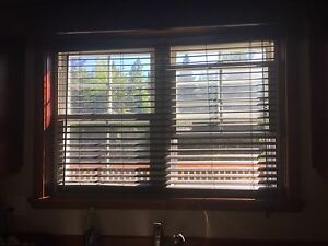 Chocolate Brown blinds for sale