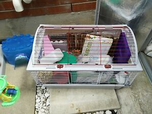 Large living world cage