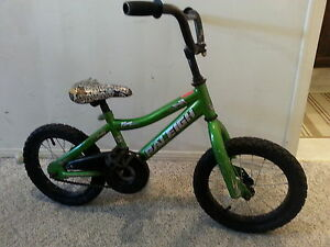 Raleigh Kids 14inch