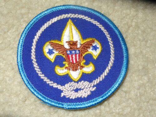 Boy Scout BSA Scouts America Contingent Uniform 2019 World Jamboree Traded Patch