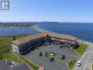 28 Lions Crescent Unit#3 Conception Bay South, Newfoundland & La