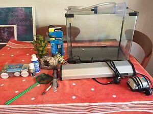 Tropical Fish Tank Bassendean Bassendean Area Preview