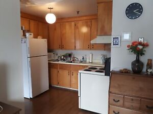 Walk to Downtown, Parking, Laundry-