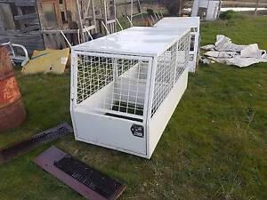 New dog cage Orange Orange Area Preview