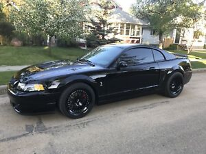 Built SRA 8.8 out of my 03 Cobra