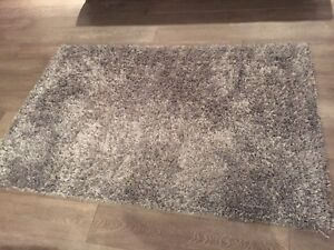 Urban barn area rug 4x6!