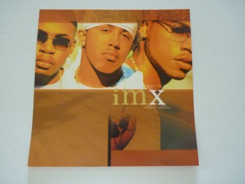IMX 2001 LP Record Photo Flat 12x12 Poster