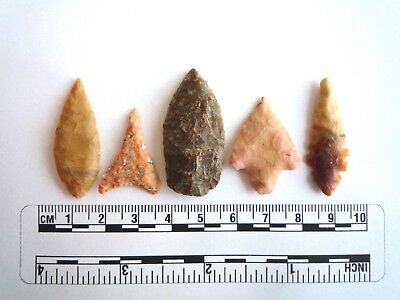 Neolithic Arrowheads x 5, High Quality Selection of Styles - 4000BC - (2415)