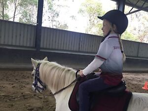 PERFECT ALLROUNDER AUS PONY MARE 12hh 9yr Bittern Mornington Peninsula Preview