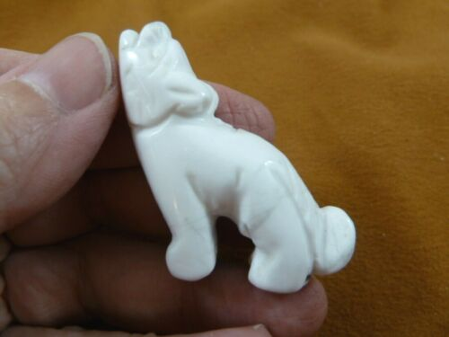 (Y-COY-ST-550) White Howlite COYOTE gemstone carving FIGURINE stone gem Coyotes