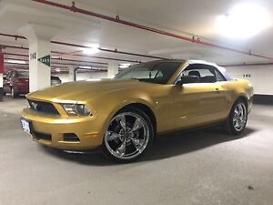 2010 Ford Mustang V6 - Gold