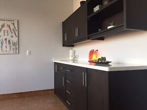 Attention Health and Wellness Professionals - Room for Rent