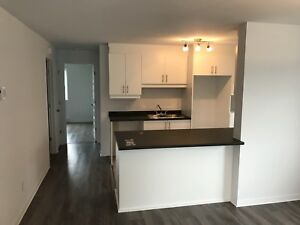 Apartment for rent for November 1