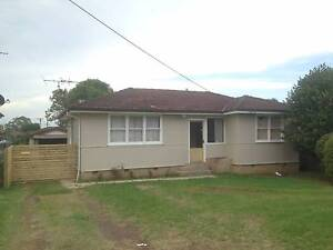 Neat and Tidy close to transport Leumeah Campbelltown Area Preview